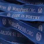 The Basics of Learning WordPress